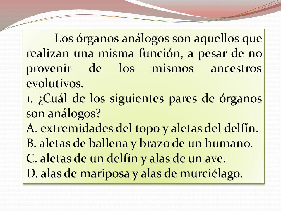 Los órganos análogos son aquellos que realizan una misma función, a pesar de no provenir de los mismos ancestros evolutivos. 1. ¿Cuál de los siguiente