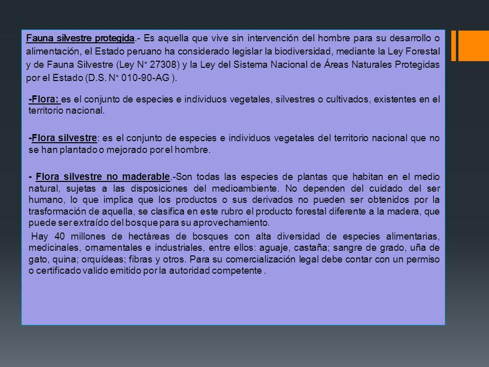 Fauna silvestre protegida.- Es aquella que vive sin intervención del hombre para su desarrollo o alimentación, el Estado peruano ha considerado legisl