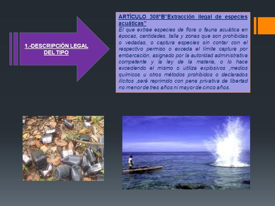 ARTÍCULO 308°BExtracción ilegal de especies acuáticas El que extrae especies de flora o fauna acuática en épocas, cantidades, talla y zonas que son pr