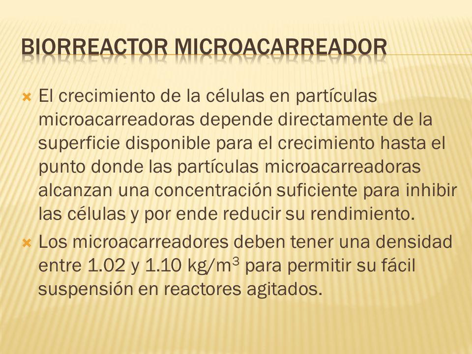 El crecimiento de la células en partículas microacarreadoras depende directamente de la superficie disponible para el crecimiento hasta el punto donde