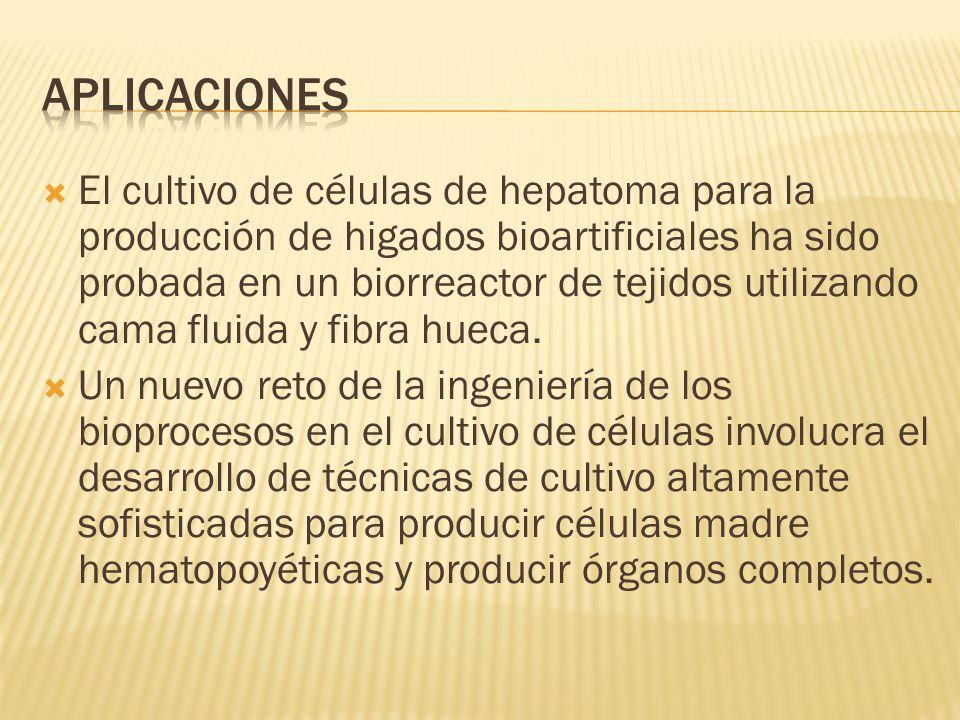 El cultivo de células de hepatoma para la producción de higados bioartificiales ha sido probada en un biorreactor de tejidos utilizando cama fluida y