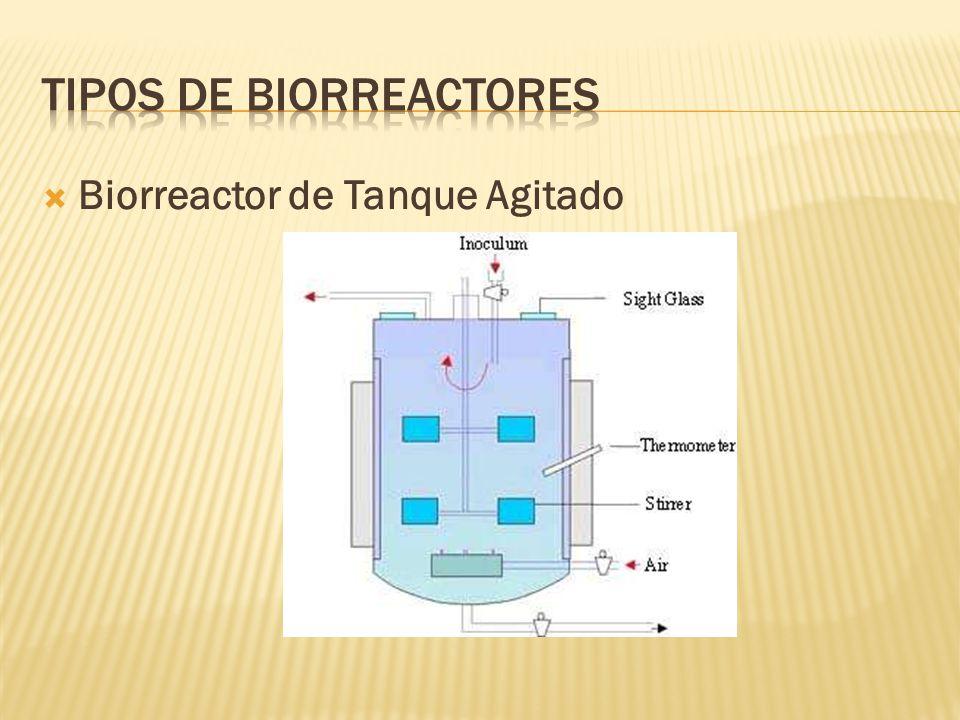 Biorreactor de Tanque Agitado