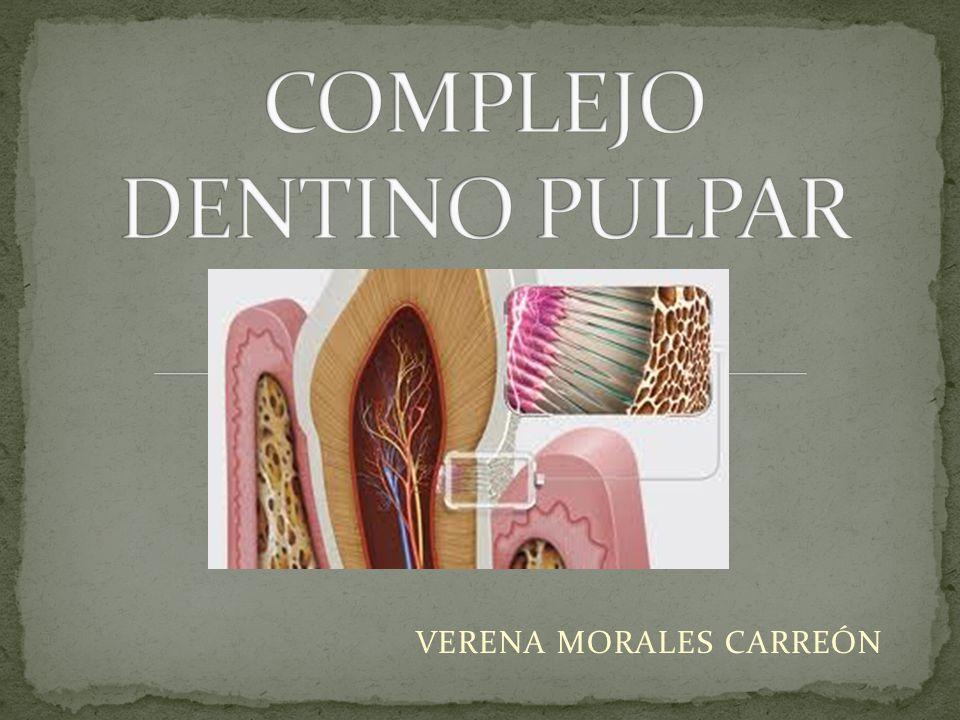 VERENA MORALES CARREÓN
