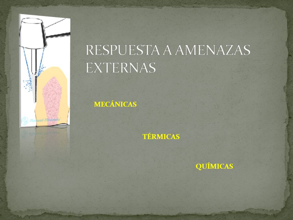 MECÁNICAS TÉRMICAS QUÍMICAS