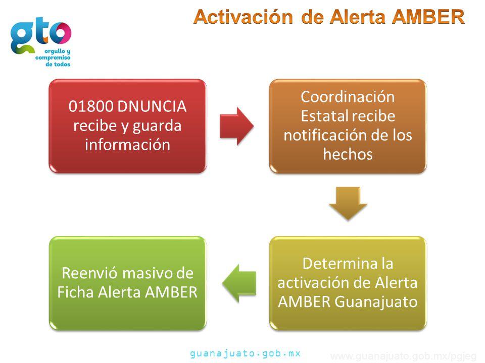 guanajuato.gob.mx www.guanajuato.gob.mx/pgjeg 01800 DNUNCIA recibe y guarda información Coordinación Estatal recibe notificación de los hechos Determina la activación de Alerta AMBER Guanajuato Reenvió masivo de Ficha Alerta AMBER