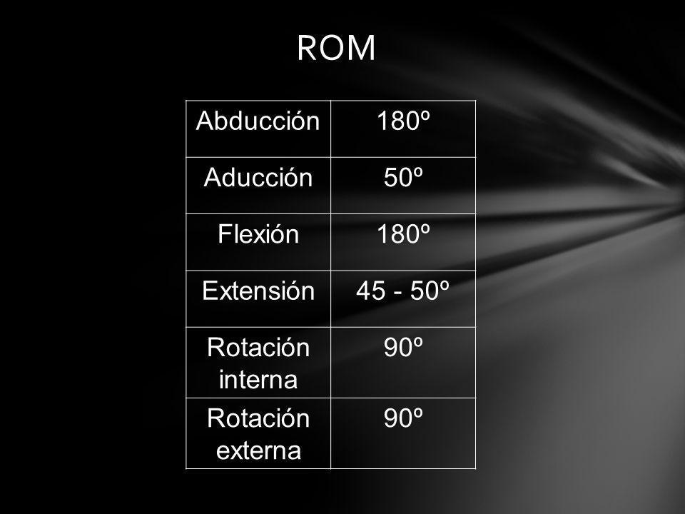 ROM Abducción180º Aducción50º Flexión180º Extensión45 - 50º Rotación interna 90º Rotación externa 90º