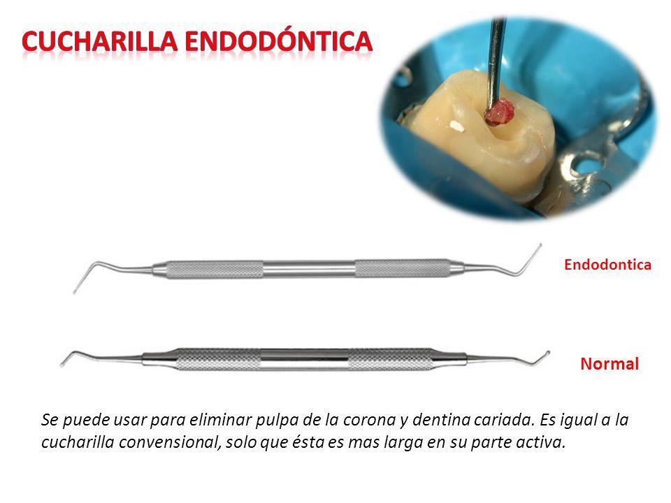 Se puede usar para eliminar pulpa de la corona y dentina cariada. Es igual a la cucharilla convensional, solo que ésta es mas larga en su parte activa