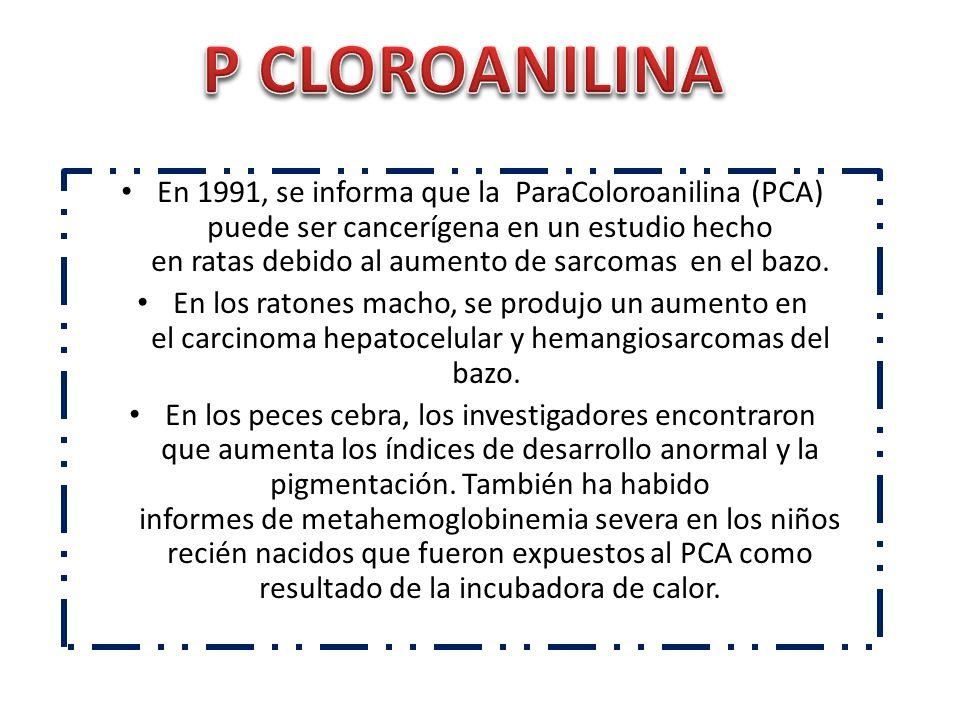 En 1991, se informa que la ParaColoroanilina (PCA) puede ser cancerígena en un estudio hecho en ratas debido al aumento de sarcomas en el bazo. En los