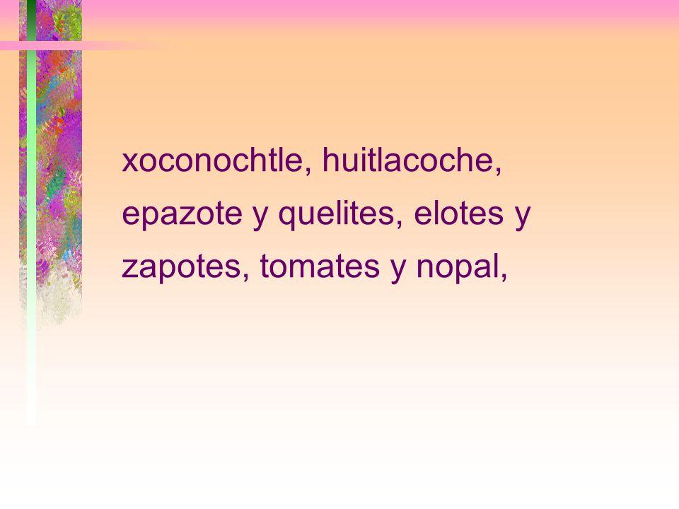 xoconochtle, huitlacoche, epazote y quelites, elotes y zapotes, tomates y nopal,