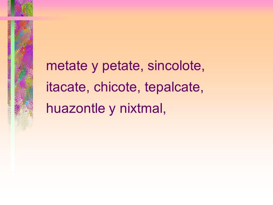 metate y petate, sincolote, itacate, chicote, tepalcate, huazontle y nixtmal,