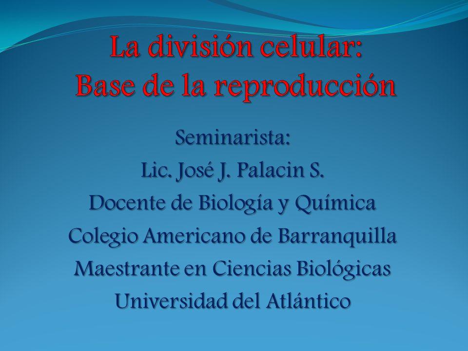 Seminarista: Lic. José J. Palacin S. Docente de Biología y Química Colegio Americano de Barranquilla Maestrante en Ciencias Biológicas Universidad del
