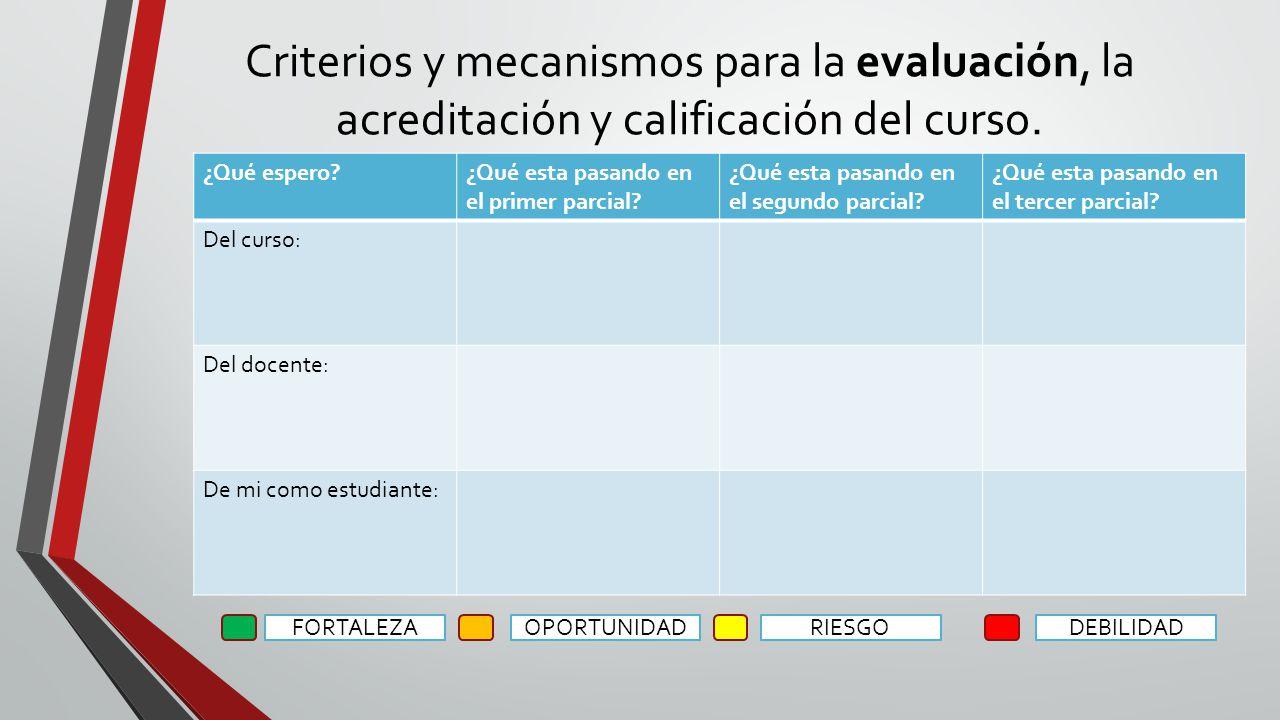 Criterios y mecanismos para la evaluación, la acreditación y calificación del curso. ¿Qué espero?¿Qué esta pasando en el primer parcial? ¿Qué esta pas