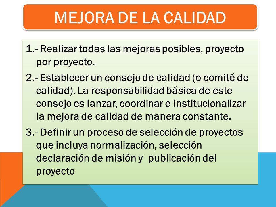 1.- Realizar todas las mejoras posibles, proyecto por proyecto. 2.- Establecer un consejo de calidad (o comité de calidad). La responsabilidad básica