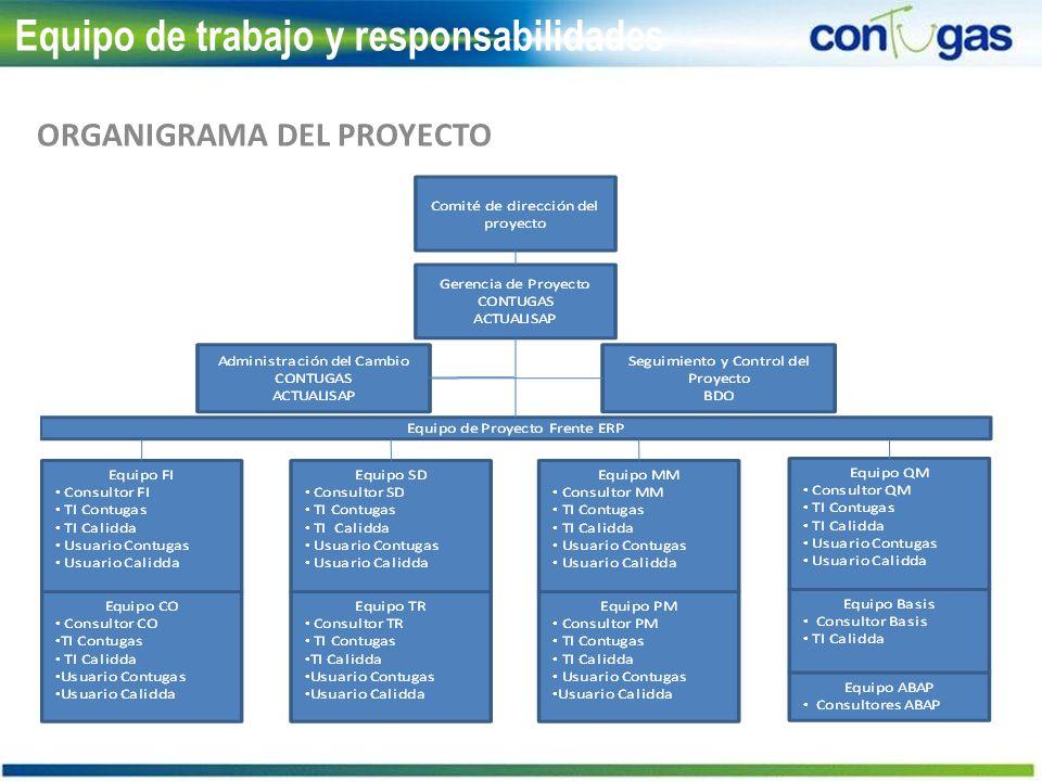 Equipo de trabajo y responsabilidades ORGANIGRAMA DEL PROYECTO