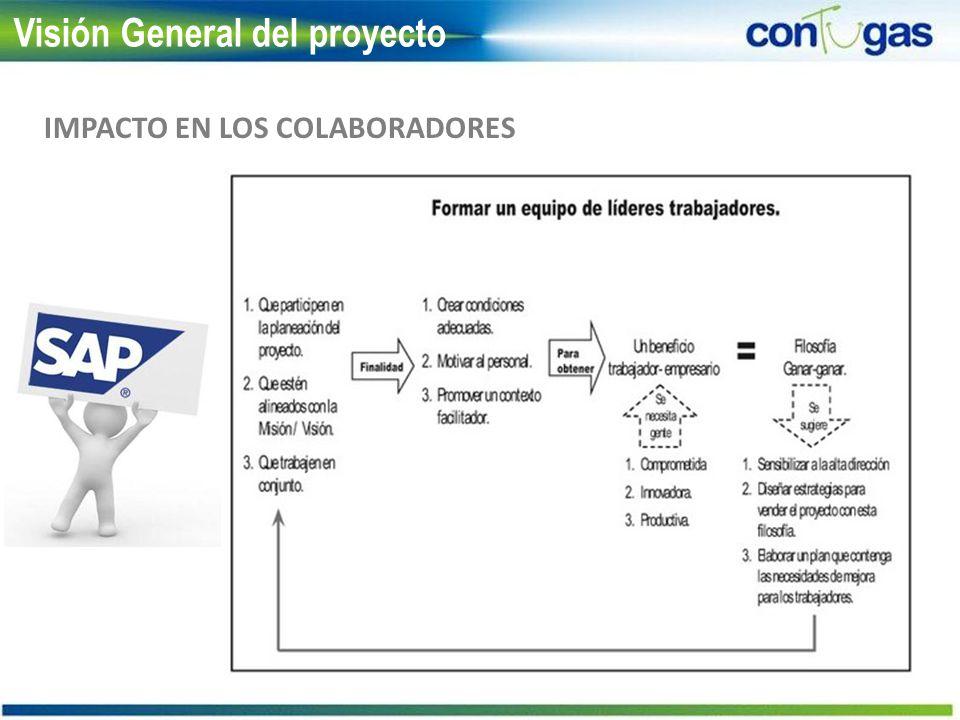 IMPACTO EN LOS COLABORADORES Visión General del proyecto