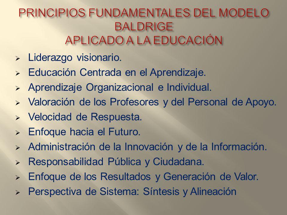 Liderazgo visionario. Educación Centrada en el Aprendizaje. Aprendizaje Organizacional e Individual. Valoración de los Profesores y del Personal de Ap