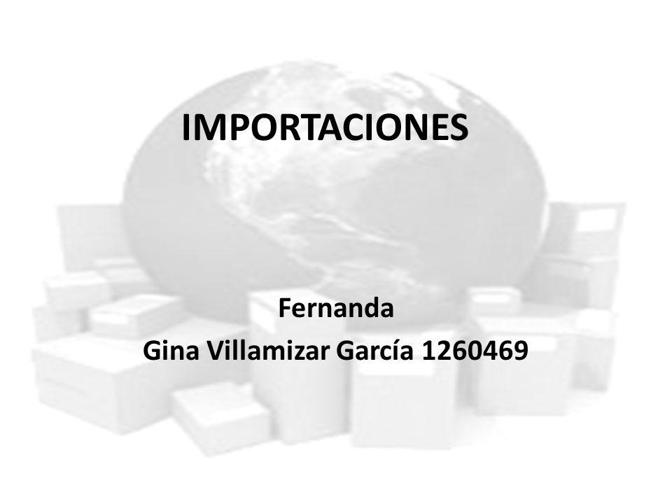 IMPORTACIONES Fernanda Gina Villamizar García 1260469