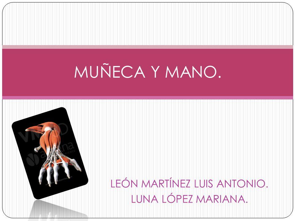 LEÓN MARTÍNEZ LUIS ANTONIO. LUNA LÓPEZ MARIANA. MUÑECA Y MANO.