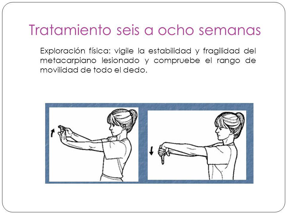Tratamiento seis a ocho semanas Exploración física: vigile la estabilidad y fragilidad del metacarpiano lesionado y compruebe el rango de movilidad de todo el dedo.
