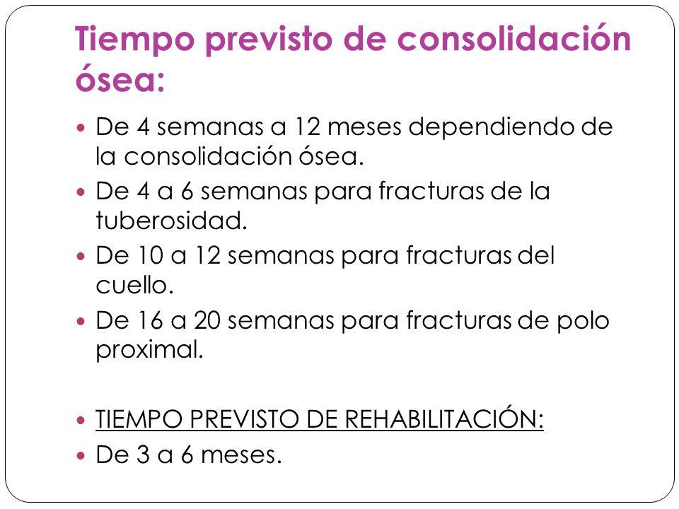 Tiempo previsto de consolidación ósea: De 4 semanas a 12 meses dependiendo de la consolidación ósea.