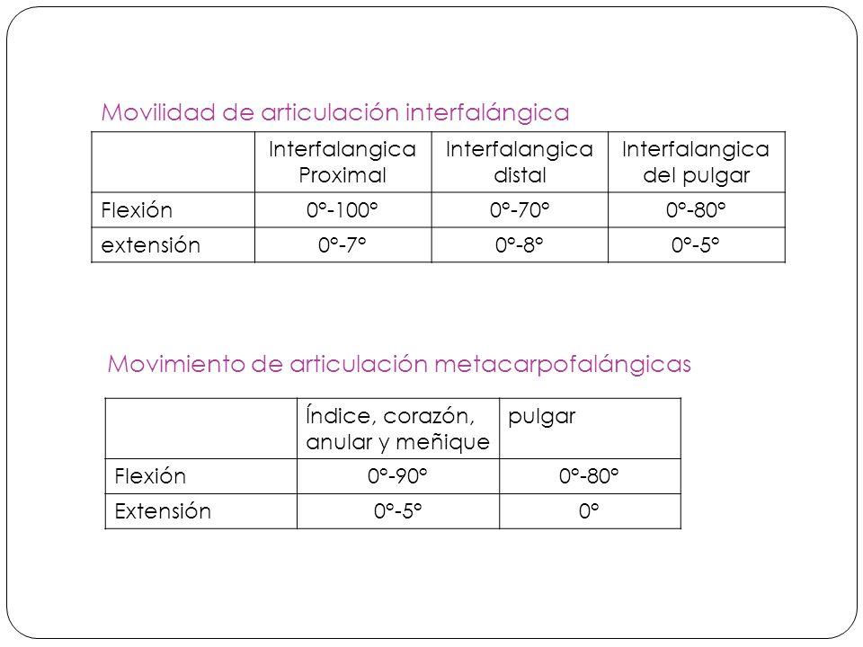 Interfalangica Proximal Interfalangica distal Interfalangica del pulgar Flexión0°-100°0°-70°0°-80° extensión0°-7°0°-8°0°-5° Movilidad de articulación interfalángica Movimiento de articulación metacarpofalángicas Índice, corazón, anular y meñique pulgar Flexión0°-90°0°-80° Extensión0°-5°0°