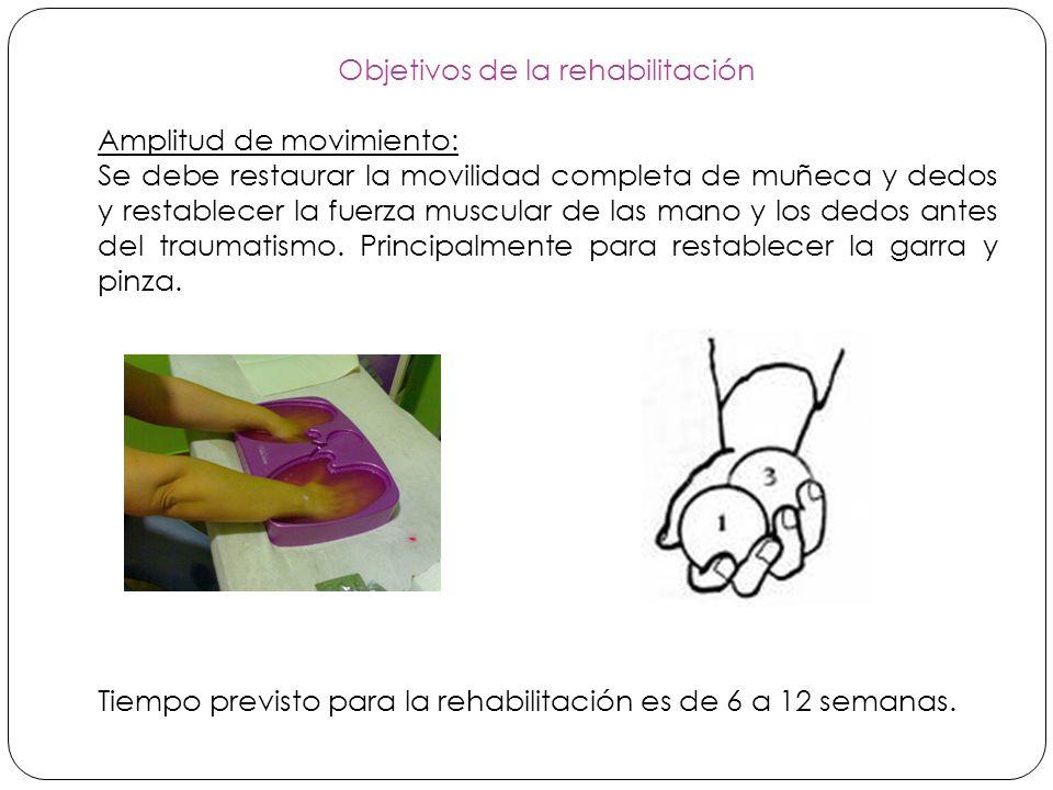 Objetivos de la rehabilitación Amplitud de movimiento: Se debe restaurar la movilidad completa de muñeca y dedos y restablecer la fuerza muscular de las mano y los dedos antes del traumatismo.