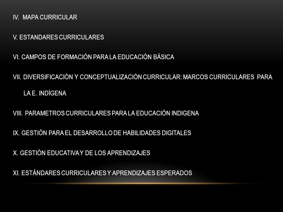IV. MAPA CURRICULAR V. ESTANDARES CURRICULARES VI. CAMPOS DE FORMACIÓN PARA LA EDUCACIÓN BÁSICA VII. DIVERSIFICACIÓN Y CONCEPTUALIZACIÓN CURRICULAR: M