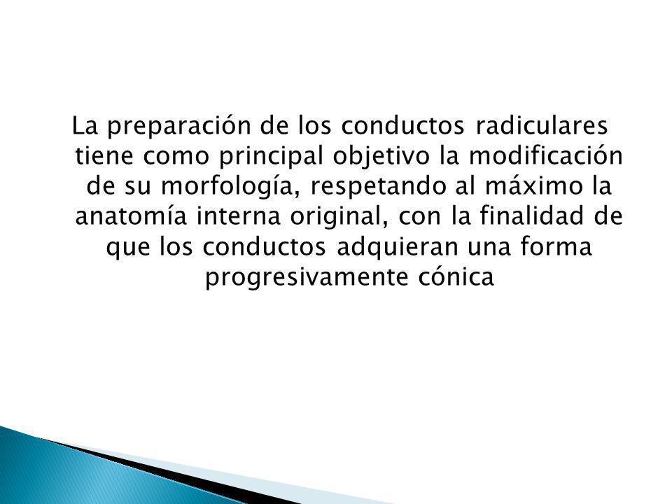 La preparación de los conductos radiculares tiene como principal objetivo la modificación de su morfología, respetando al máximo la anatomía interna o