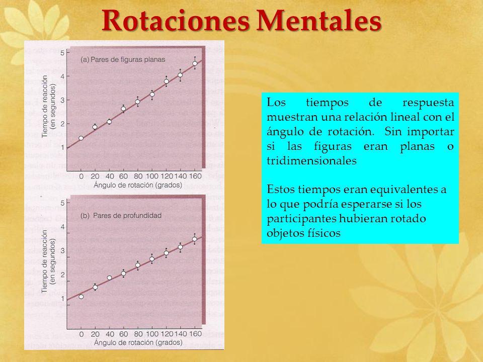 Los tiempos de respuesta muestran una relación lineal con el ángulo de rotación. Sin importar si las figuras eran planas o tridimensionales Estos tiem