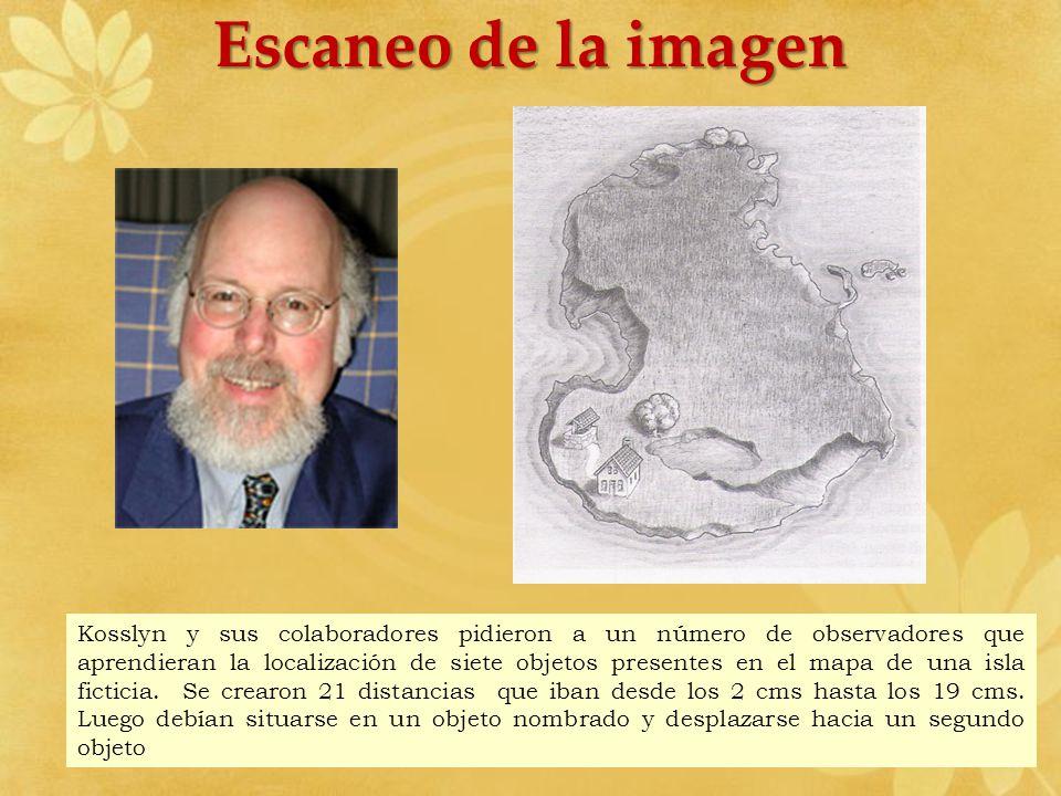 Escaneo de la imagen Kosslyn y sus colaboradores pidieron a un número de observadores que aprendieran la localización de siete objetos presentes en el
