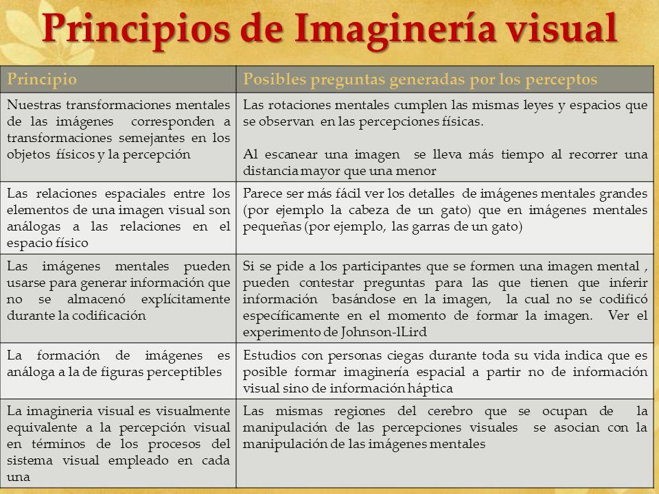 Principios de Imaginería visual PrincipioPosibles preguntas generadas por los perceptos Nuestras transformaciones mentales de las imágenes corresponde