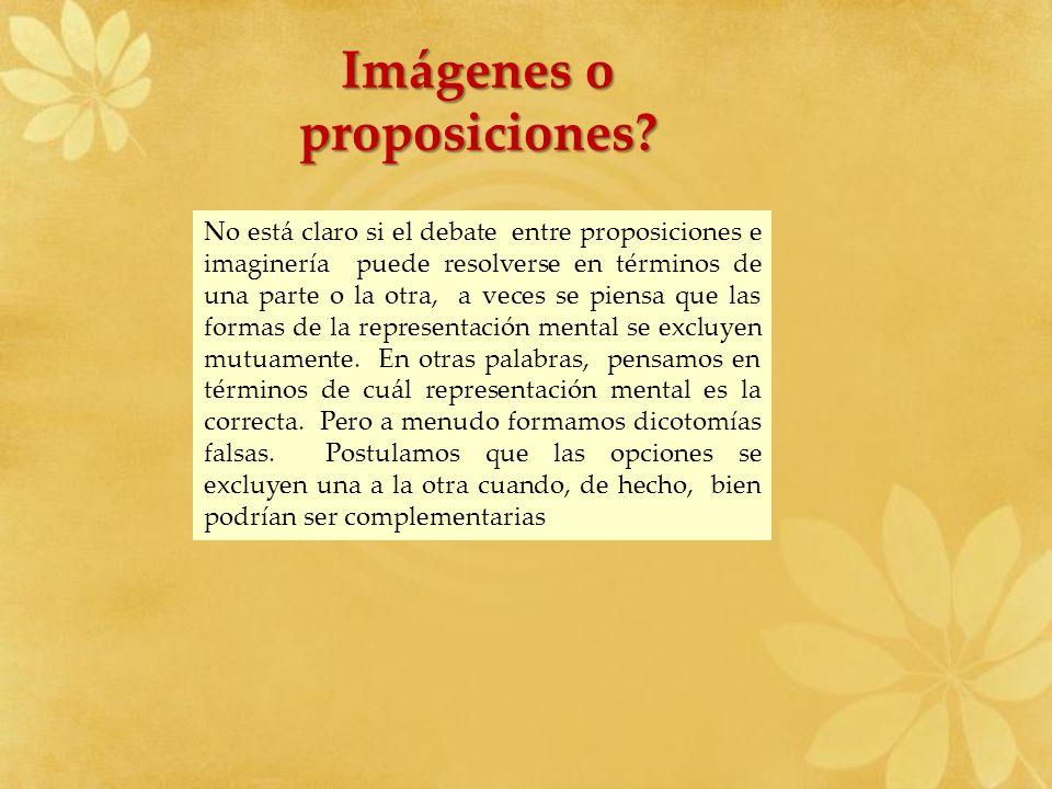No está claro si el debate entre proposiciones e imaginería puede resolverse en términos de una parte o la otra, a veces se piensa que las formas de l