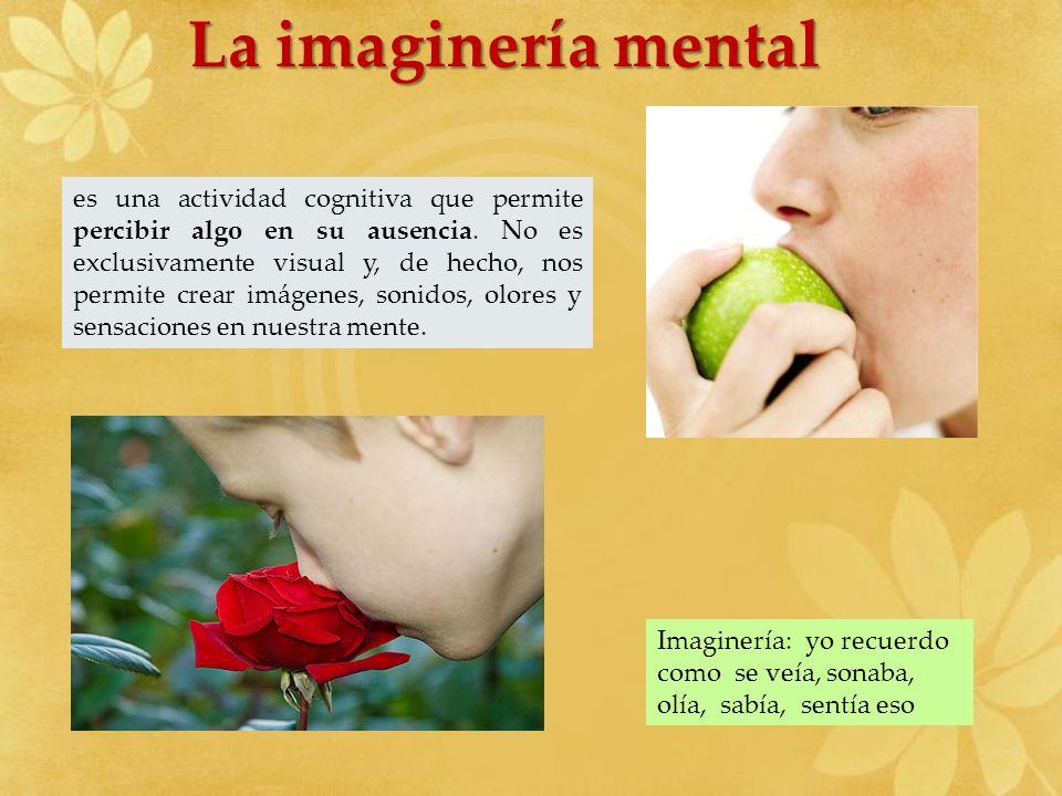 La imaginería mental es una actividad cognitiva que permite percibir algo en su ausencia. No es exclusivamente visual y, de hecho, nos permite crear i