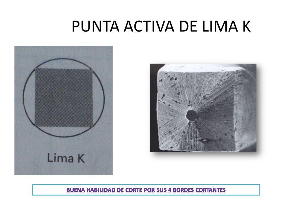 PUNTA ACTIVA DE LIMA K