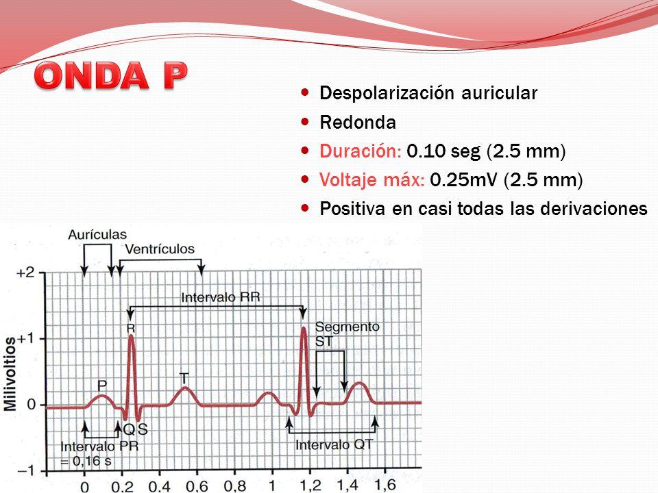 Despolarización auricular Redonda Duración: 0.10 seg (2.5 mm) Voltaje máx: 0.25mV (2.5 mm) Positiva en casi todas las derivaciones