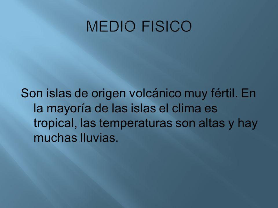 Son islas de origen volcánico muy fértil. En la mayoría de las islas el clima es tropical, las temperaturas son altas y hay muchas lluvias.