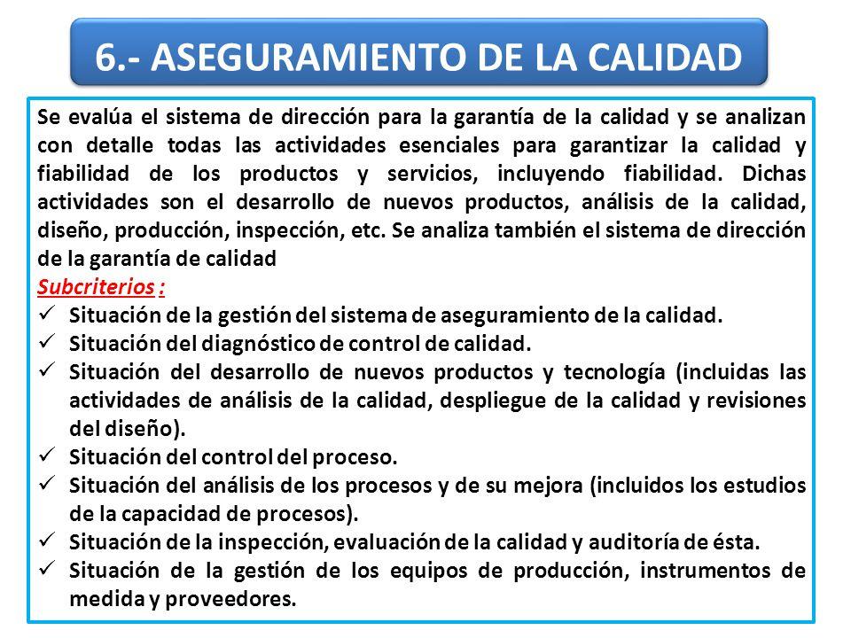 Se evalúa el sistema de dirección para la garantía de la calidad y se analizan con detalle todas las actividades esenciales para garantizar la calidad