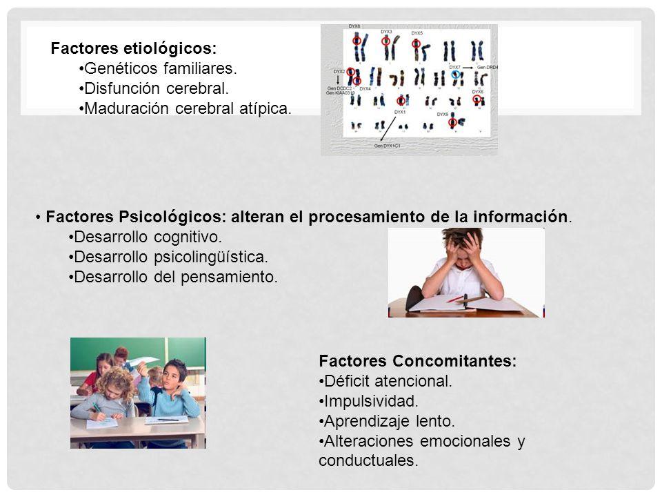 Factores Psicológicos: alteran el procesamiento de la información. Desarrollo cognitivo. Desarrollo psicolingüística. Desarrollo del pensamiento. Fact