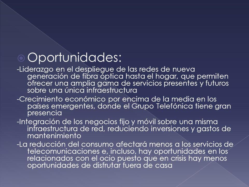 Fortalezas: -Carácter multinacional, con diversificación de sus negocios por áreas geográficas, reduciendo los riesgos políticos, tipos de cambio, crisis económicas, etc.