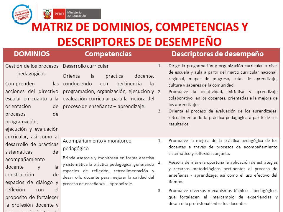 MATRIZ DE DOMINIOS, COMPETENCIAS Y DESCRIPTORES DE DESEMPEÑO DOMINIOSCompetenciasDescriptores de desempeño Gestión de los procesos pedagógicos Compren