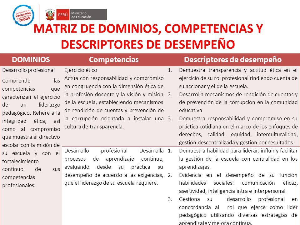 MATRIZ DE DOMINIOS, COMPETENCIAS Y DESCRIPTORES DE DESEMPEÑO DOMINIOSCompetenciasDescriptores de desempeño Desarrollo profesional Comprende las compet
