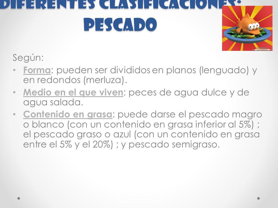 Diferentes clasificaciones: PESCADO Según: Forma : pueden ser divididos en planos (lenguado) y en redondos (merluza).