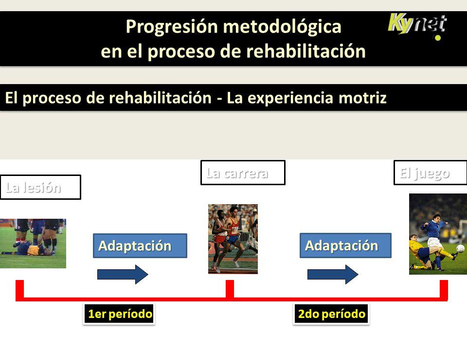 Progresión metodológica en el proceso de rehabilitación Progresión metodológica en el proceso de rehabilitación El proceso de rehabilitación - La expe