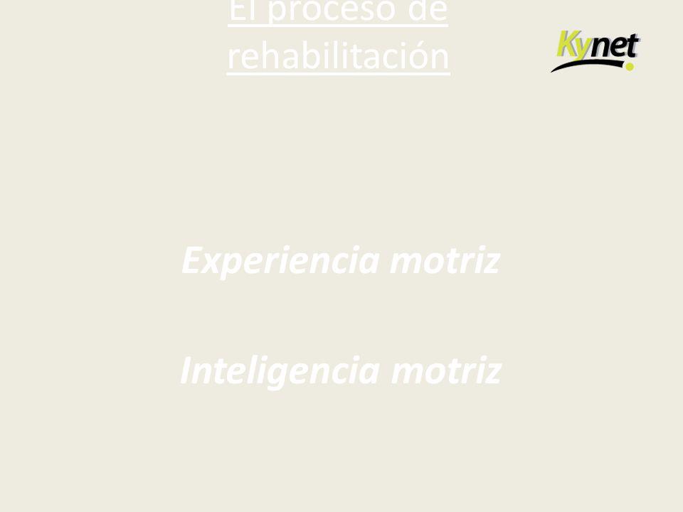 El proceso de rehabilitación Experiencia motriz Inteligencia motriz
