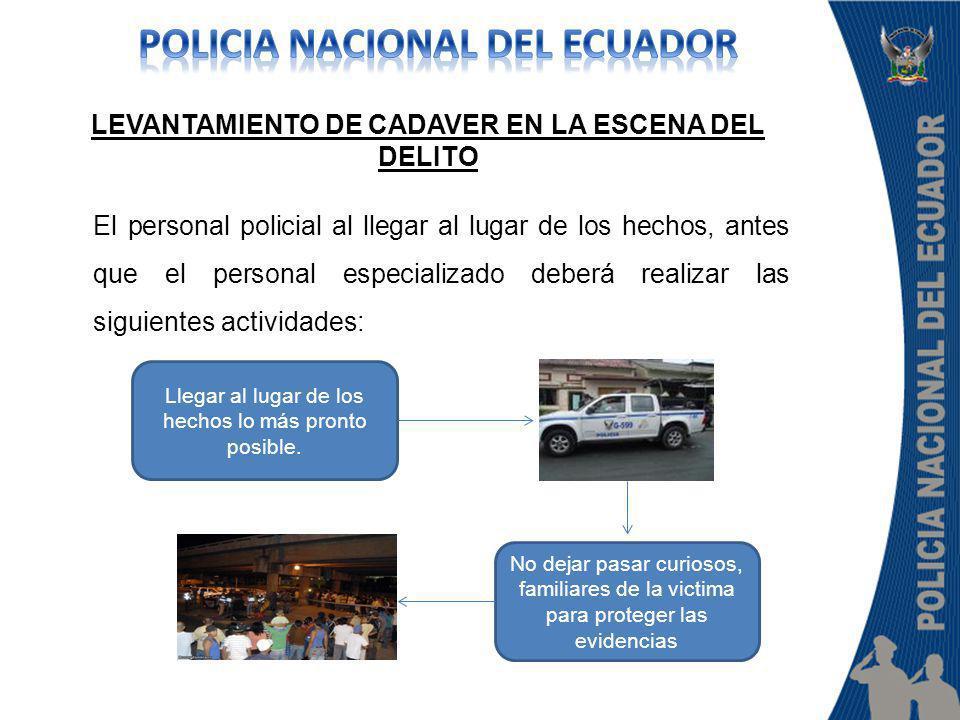 El personal policial al llegar al lugar de los hechos, antes que el personal especializado deberá realizar las siguientes actividades: LEVANTAMIENTO D