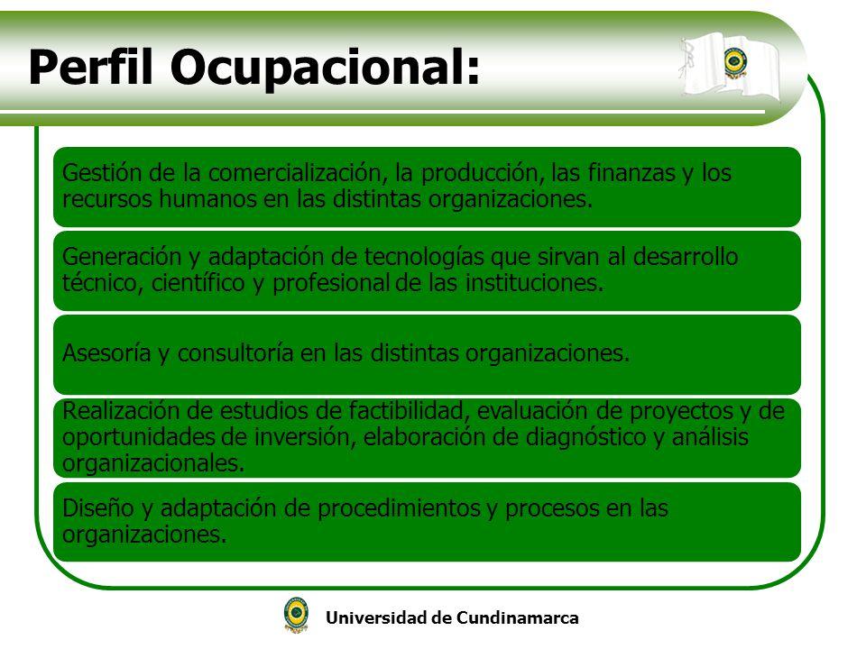 Universidad de Cundinamarca Perfil Ocupacional: Gestión de la comercialización, la producción, las finanzas y los recursos humanos en las distintas or