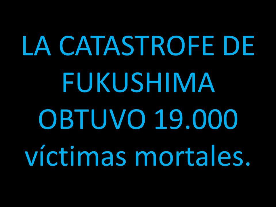 LA CATASTROFE DE FUKUSHIMA OBTUVO 19.000 víctimas mortales.