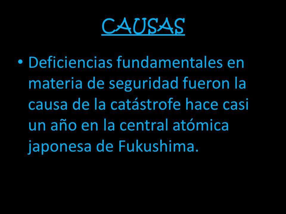 CAUSAS Deficiencias fundamentales en materia de seguridad fueron la causa de la catástrofe hace casi un año en la central atómica japonesa de Fukushima.