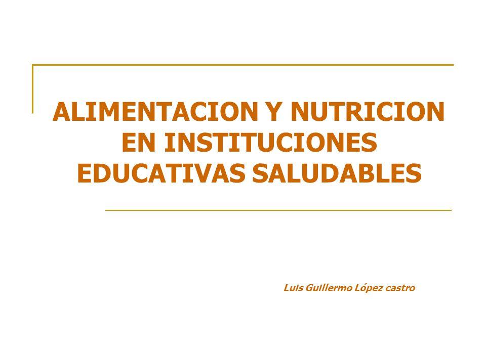 ALIMENTACION Y NUTRICION EN INSTITUCIONES EDUCATIVAS SALUDABLES Luis Guillermo López castro