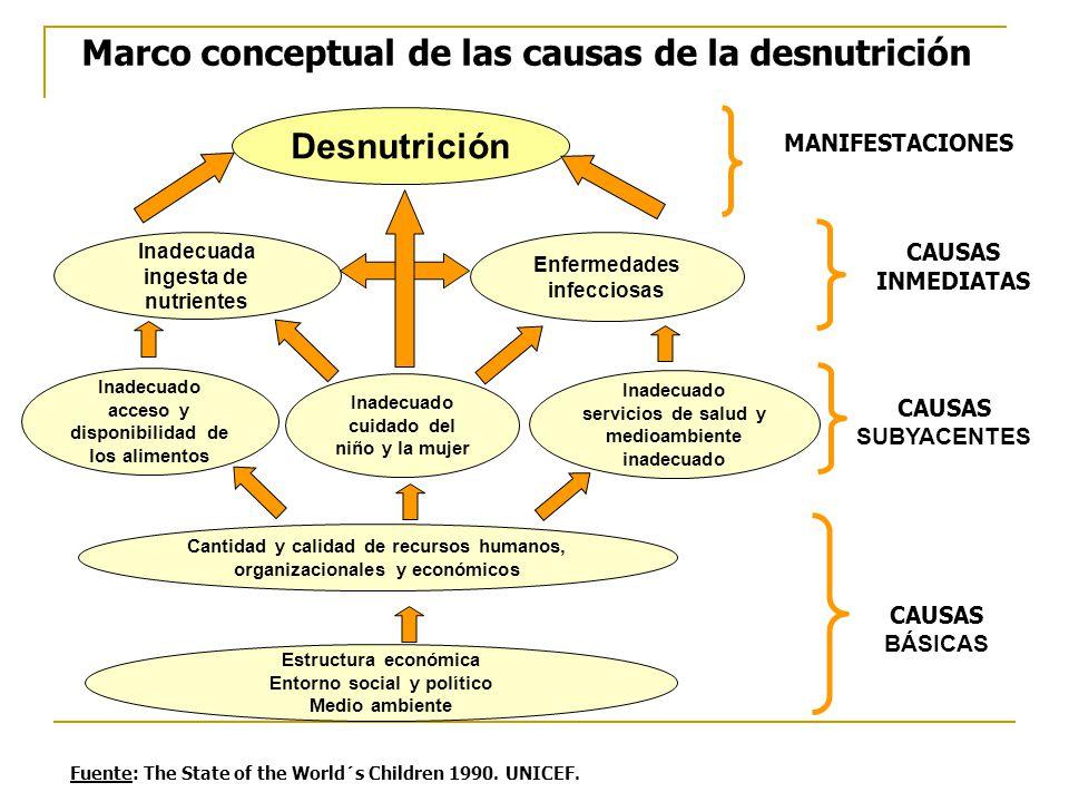 Desnutrición Inadecuada ingesta de nutrientes Enfermedades infecciosas Inadecuado acceso y disponibilidad de los alimentos Inadecuado cuidado del niño y la mujer Inadecuado servicios de salud y medioambiente inadecuado Marco conceptual de las causas de la desnutrición Cantidad y calidad de recursos humanos, organizacionales y económicos Estructura económica Entorno social y político Medio ambiente CAUSAS BÁSICAS MANIFESTACIONES CAUSAS SUBYACENTES CAUSAS INMEDIATAS Fuente: The State of the World´s Children 1990.
